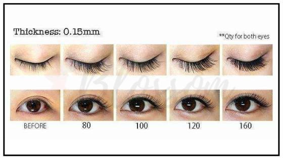 Eyelash Extensions Size